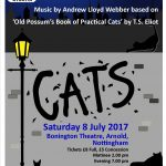 Cats Show Big Box Youth Theatre